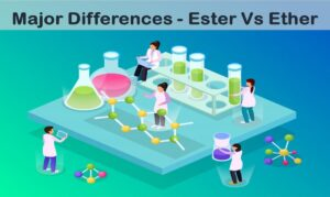 Read more about the article Ester Vs Ether – Major Differences