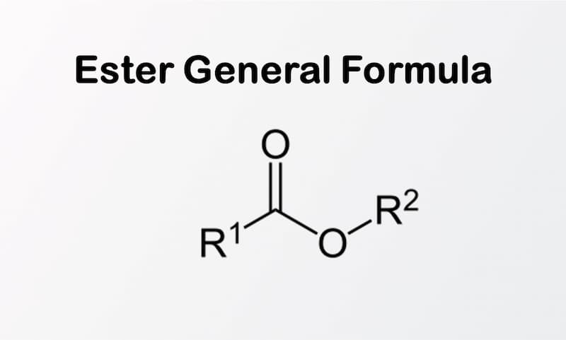 3- General Formula for Ester explained in article - Differences between ester and ether
